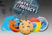 Accettare i Cookie dei siti internet per la navigazione - I cookie, questi sconosciuti